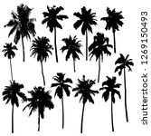 set of vector silhouettes of... | Shutterstock . vector #1269150493