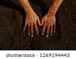 Small photo of Farmer man hands dirty on substratum of urban garden orchard