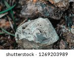 a collection of huge rocks | Shutterstock . vector #1269203989