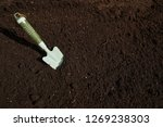 Small photo of Garden trowel in substratum for orchard background
