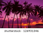 Palm Trees Silhouette At Sunse...