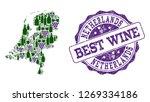 vector collage of grape wine... | Shutterstock .eps vector #1269334186