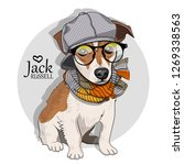 vector dog with grey hat ... | Shutterstock .eps vector #1269338563