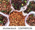 varouis fried bug in market | Shutterstock . vector #1269489136
