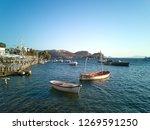 summer life in gumusluk  bodrum ...   Shutterstock . vector #1269591250