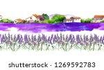 lavender flowers   violet... | Shutterstock . vector #1269592783