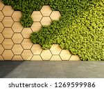 wall in modern interior with... | Shutterstock . vector #1269599986