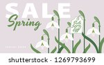 spring sale banner with bloom... | Shutterstock .eps vector #1269793699