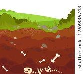 buried  dinosaur skeleton bone ... | Shutterstock .eps vector #1269836743