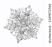 snowflake isolated on white... | Shutterstock .eps vector #1269872566
