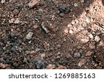 rough textured ground surface | Shutterstock . vector #1269885163