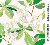 creamy blush rhododendron... | Shutterstock .eps vector #1269920629