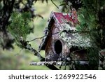 Old Wooden Birdhouse On A Tree