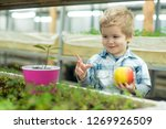 youth. concept of healthy youth ... | Shutterstock . vector #1269926509