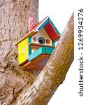 Isolated Colored Birdhouse On A ...