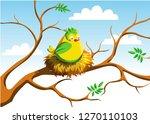 cute bird in nest. this bird in ... | Shutterstock .eps vector #1270110103