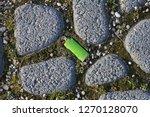 broken cigarette lighter...   Shutterstock . vector #1270128070