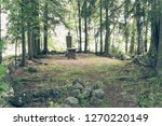 ky li   finland   july 27  2017 ... | Shutterstock . vector #1270220149