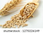 wheat spike and grains   Shutterstock . vector #1270226149