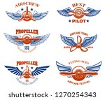 set of vintage airplane show... | Shutterstock .eps vector #1270254343