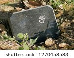 Stock photo tombstone on pet s grave 1270458583