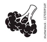 broccoli food icon. simple...   Shutterstock . vector #1270509169