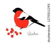 bullfinch and rowan. winter... | Shutterstock .eps vector #1270511293