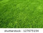 photo of the beautiful green...   Shutterstock . vector #127075154