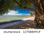 palm trees on the south end of... | Shutterstock . vector #1270884919