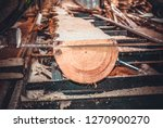 sawmill. process of machining... | Shutterstock . vector #1270900270