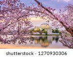 Washington Dc  Usa At The...