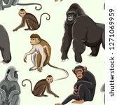 different types of monkeys... | Shutterstock . vector #1271069959