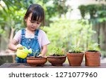 adorable 3 years old asian... | Shutterstock . vector #1271077960