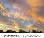 pale golden sky before sunrise | Shutterstock . vector #1271079640