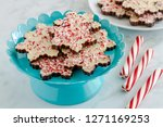 chocolate peppermint bark in... | Shutterstock . vector #1271169253