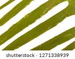 laminaria  kelp  seaweed... | Shutterstock . vector #1271338939