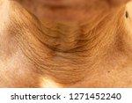 senior woman's wrinkled neck ... | Shutterstock . vector #1271452240