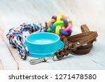 Stock photo pet supplies concept pet leather leashes brush and rubber toy 1271478580
