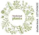 round template with medicinal... | Shutterstock .eps vector #1271543653