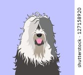 old english sheepdog  the buddy ... | Shutterstock .eps vector #127158920