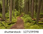 Photograph Of A Trail Tracking...