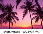 coconut tree at tropical coast... | Shutterstock . vector #1271934793