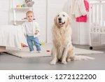 adorable kid and golden... | Shutterstock . vector #1272122200