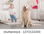 adorable kid and cute golden... | Shutterstock . vector #1272122203
