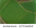 aerial view of the field | Shutterstock . vector #1272166063