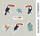 vector objects. toucans and... | Shutterstock .eps vector #1272380890