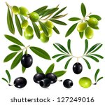 green and black olives with... | Shutterstock .eps vector #127249016