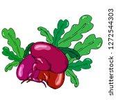 turnip  beets. vector of a beet ... | Shutterstock .eps vector #1272544303