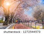 01 01 2019 seoul korea tourist...   Shutterstock . vector #1272544573