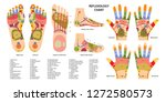 reflex zones on the feet and... | Shutterstock .eps vector #1272580573